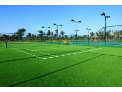 四川体育人造草坪建设