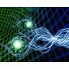 量子技术来源于哪里 量子植入量