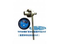 YHY60单通道煤矿用本安型数字压力计