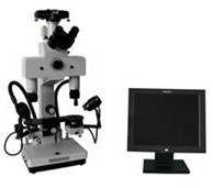 6C比对显微镜