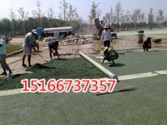 郑州工程队专用透水沥青摊铺机规格