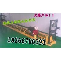 山东厂家专业销售汽油机振动尺