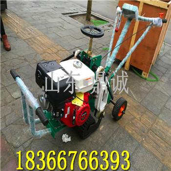 现货起草机 草坪移植机价格 供应手推起草皮机