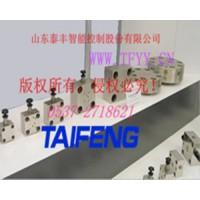 TAIFENG二通阀盖板TLFA025KWE泰丰梭阀