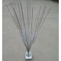 防鸟刺规格型号 驱鸟刺制造厂家