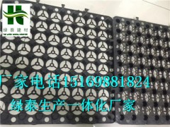 珠海3公分蓄排水板\惠州车库排水板2