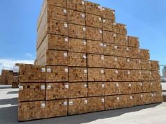 三水港进口木材|原木清关流程