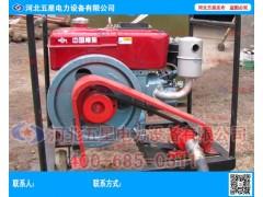 小型便携式柴油植桩机 能量大 重量