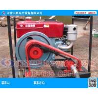 小型便携式柴油植桩机 能量大 重
