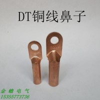非标铜鼻子 DT-25mm铜线鼻子 电
