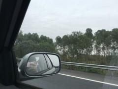 上海港汽车轮毂进口报关海关税率202