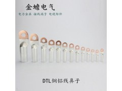 铜铝过渡端子 DTL铜铝线鼻子