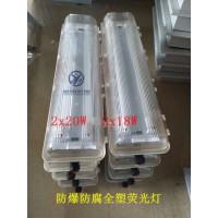 BYS-2*36W带蓄电池防爆防腐全塑