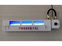 诱捕式BPY-ExdIIBT6Gb防爆荧光灭蚊
