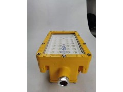 装置区100WLED防爆射灯 100W防爆LED